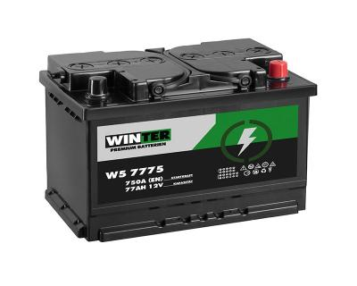 Winter Autobatterie 77Ah 12V